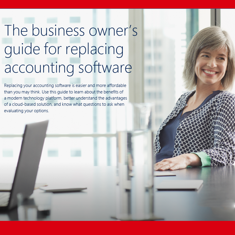 executive using laptop for accounting software